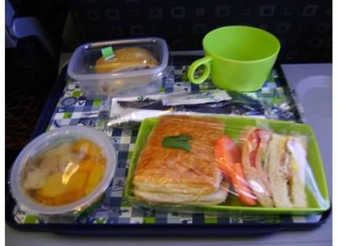 meal on plane